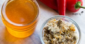 Lotion Bar Sticks for Arthritis and Achy Muscles - This easy DIY recipe features a trio of herbs (cayenne, ginger and arnica flowers) that have been shown to help relieve pain, inflammation and arthritis.