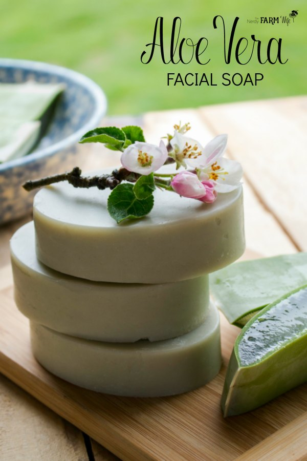 Learn how to make aloe vera soap with fresh aloe; also includes a cold process recipe for aloe vera facial soap bars.