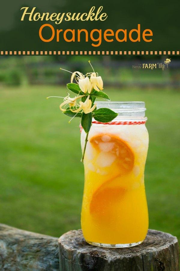 Honeysuckle Orangeade is a naturally sweetened, kid-friendly, and refreshing summer drink recipe with the added health benefits of honeysuckle herbal tea.