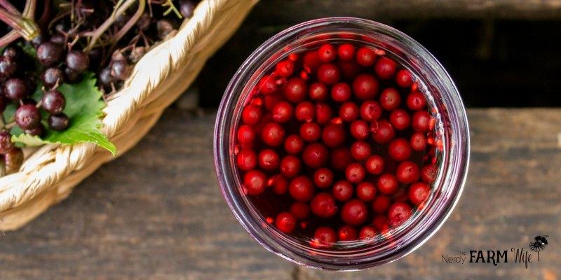 A jar of elderberries and vinegar
