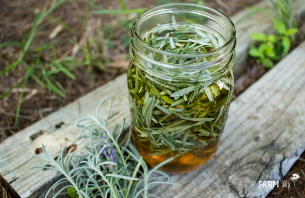 apple cider vinegar infused with lavender leaves