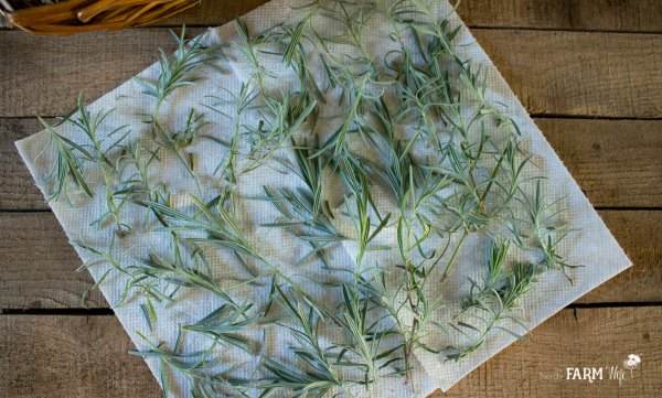 drying lavender leaves on a paper towel