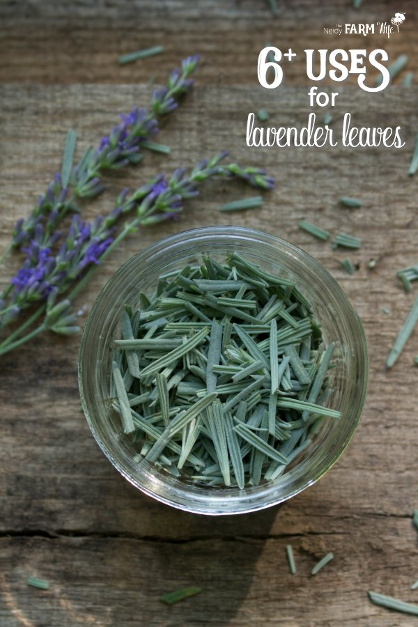 a jar of lavender leaves on a wooden table