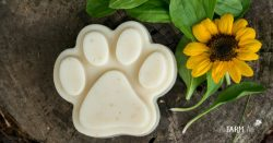 Homemade Dog Shampoo Bar with Plantain Leaves & a Sunflower