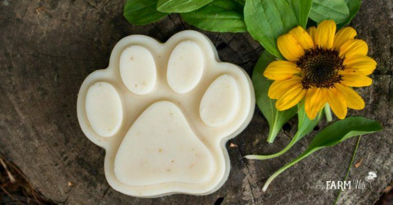 Homemade Dog Shampoo Bars Recipe {with neem oil}