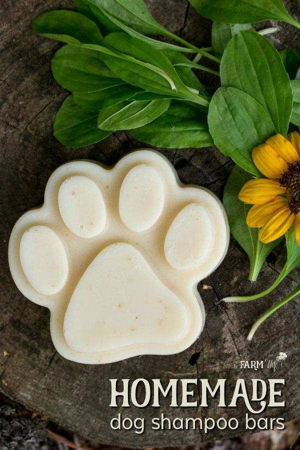 These natural homemade dog shampoo bars feature neem oil, which is especially helpful at repelling fleas and treating a variety of skin complaints.