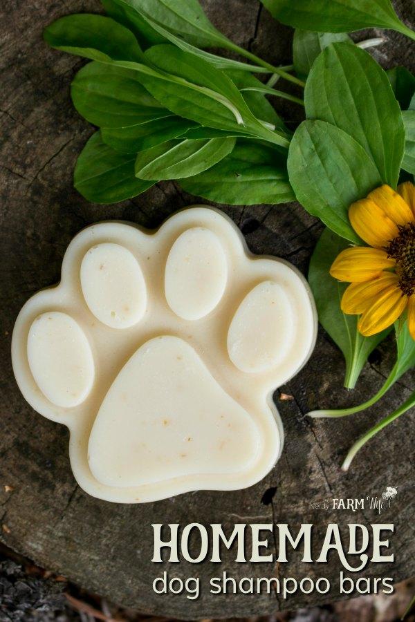 Homemade Dog Shampoo Bars Recipe {with