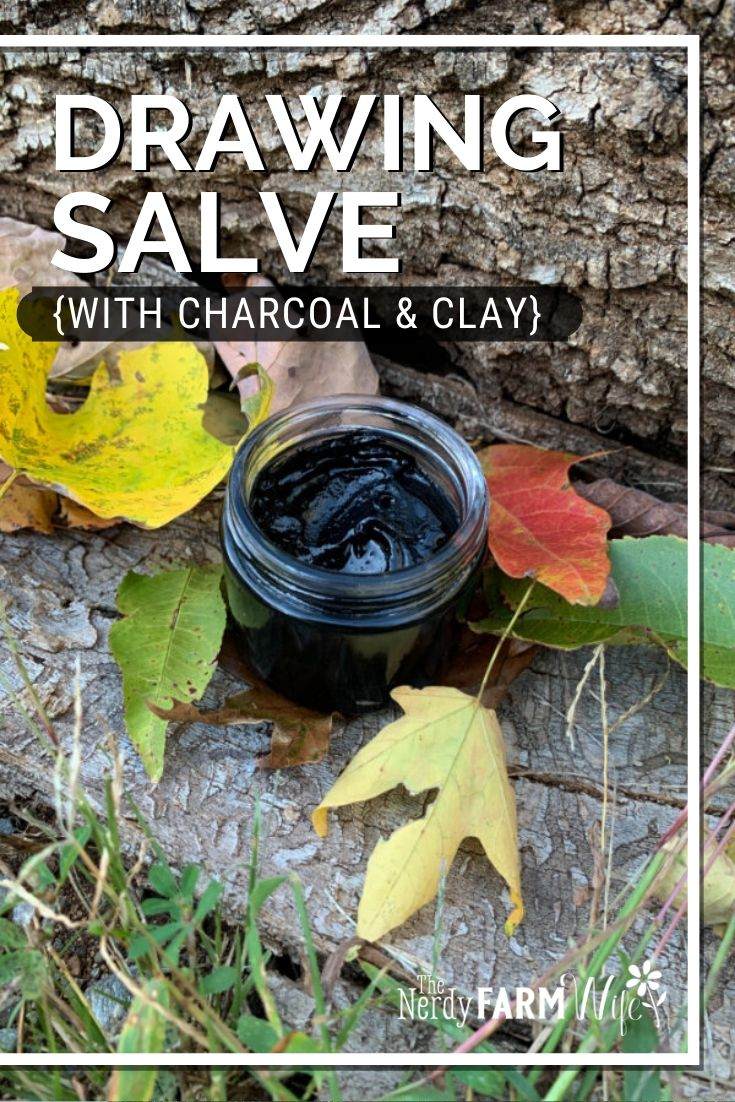 charcoal and clay drawing salve in autumn leaves