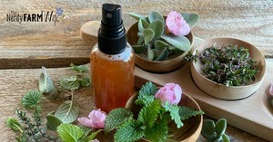spray bottle of throat spray surrounded by fresh herbs