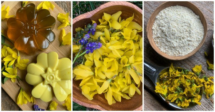 forsythia flowers, soap, and cleansing grains