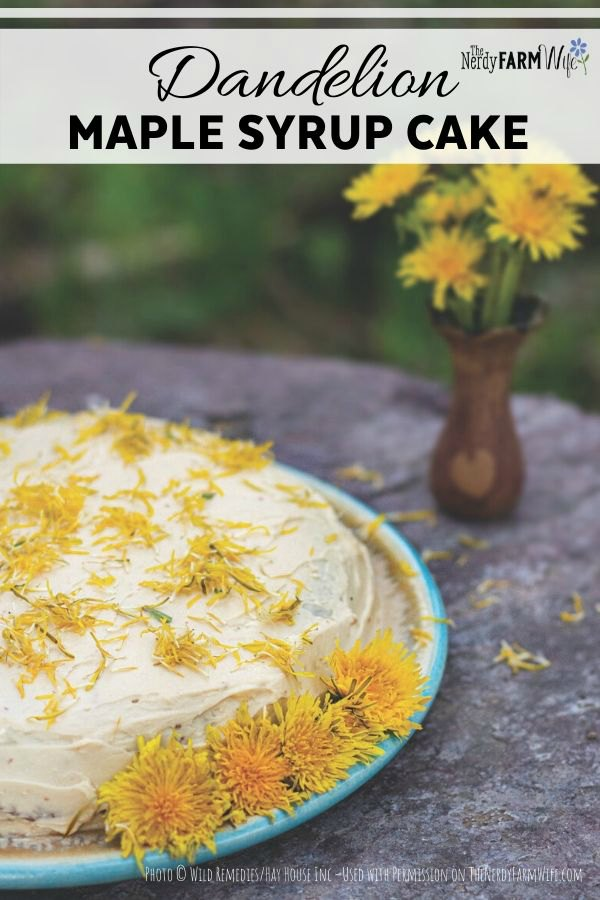 a single layer cake on a blue platter covered with fresh dandelion flowers