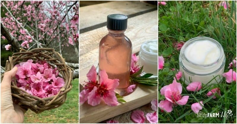 fresh peach blossoms, peach glycerite and face cream