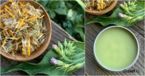 bowl of dried arnica flowers, comfrey leaves and flowers, tin of salve