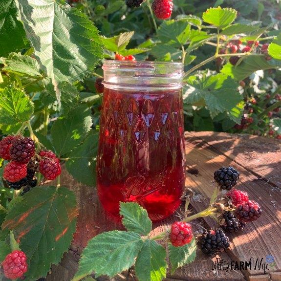 jar of blackberry vinegar surrounded by blackberries on the vine