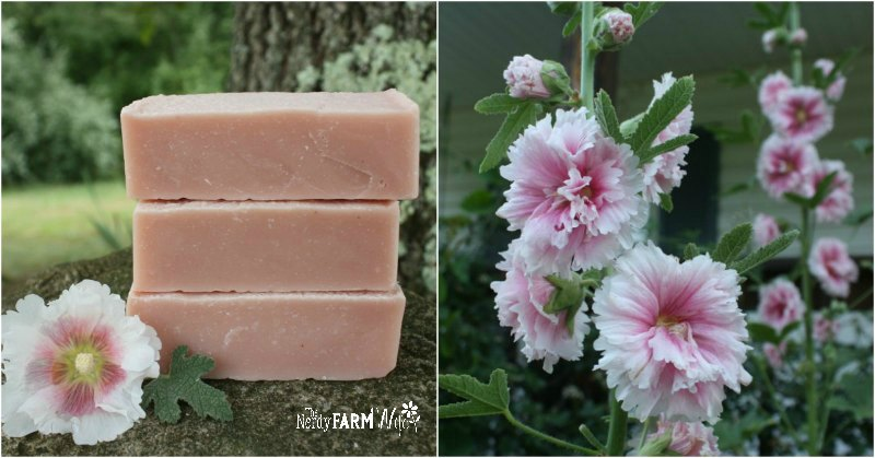 bars of soap, hollyhock flowers