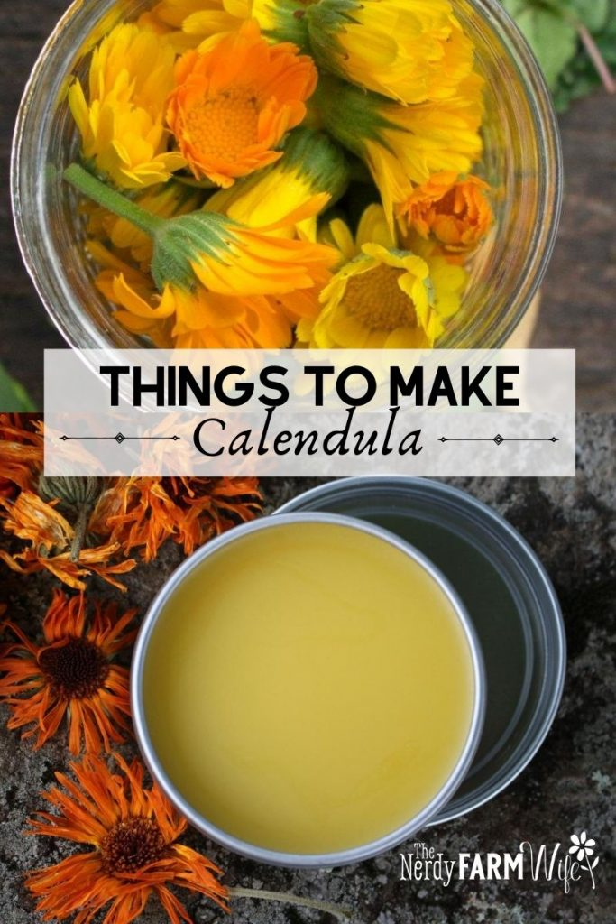 calendula flowers and salve