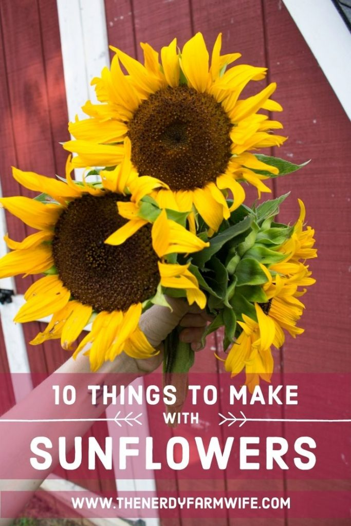 woman's hand holding bunch of sunflowers in front of a barn