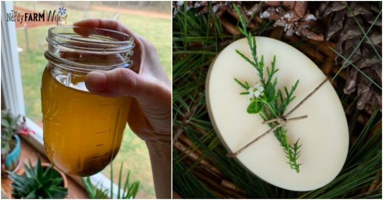 How to Make Pine Resin Soap {2 recipes}