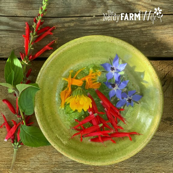 small saucer with edible flowers