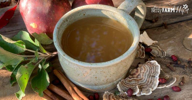 Turkey Tail Mushroom Mulled Apple Cider (with Astragalus)