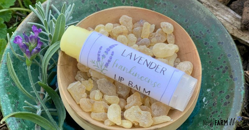 tube of lip balm displayed on small wooden bowl of frankincense resin beside a sprig of lavender
