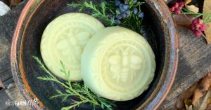 two lotion bars in a brown pottery bowl on rustic background with fresh cedar sprigs and berries