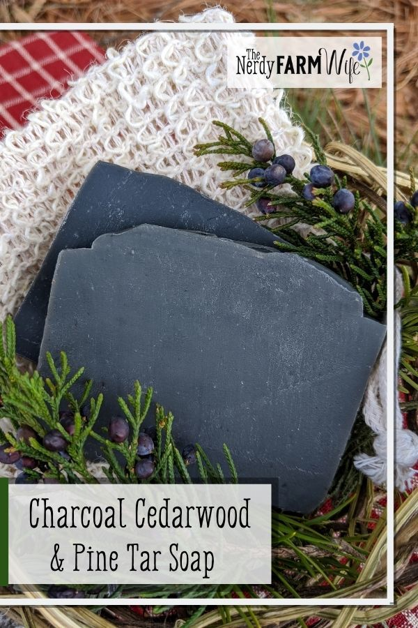 2 bars of charcoal soap and fresh cedarwood and pine sprigs