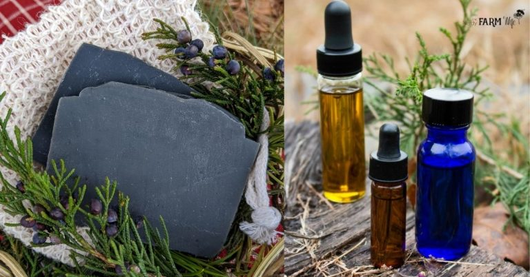 Charcoal Cedarwood & Pine Tar Soap