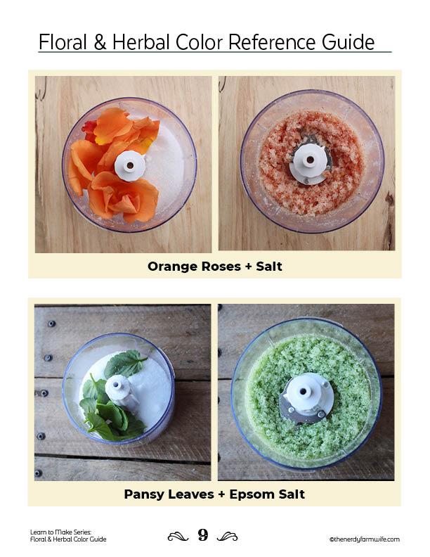 color guide sample