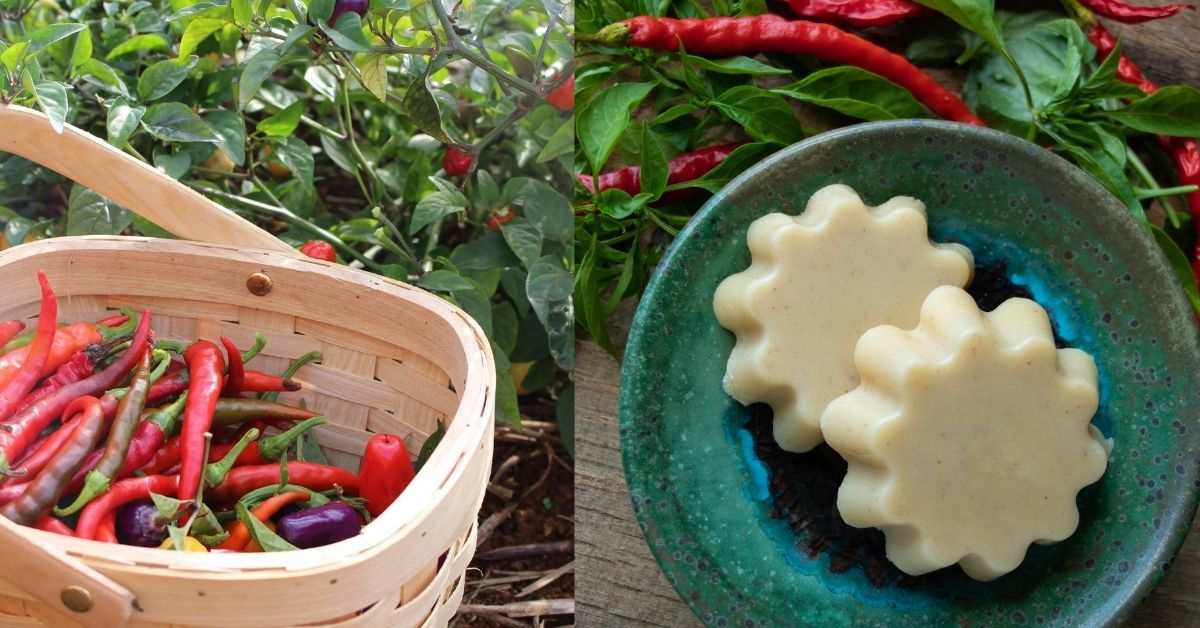 basket of hot peppers and lotion bars made with cayenne peppers