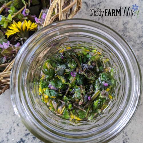garden weeds infusing in water in glass jar