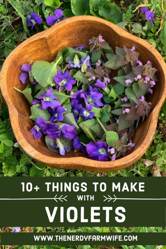 """bowl of violets and purple dead nettle, text says """"10 + Things to Make with Violets"""""""
