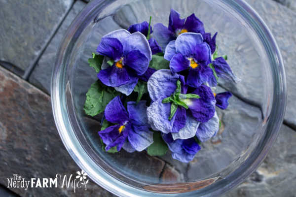 bowl of dried pansy flowers and leaves