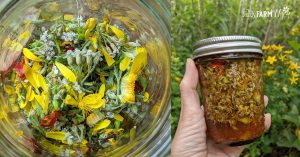 jar of liniment containing chopped herbs and witch hazel