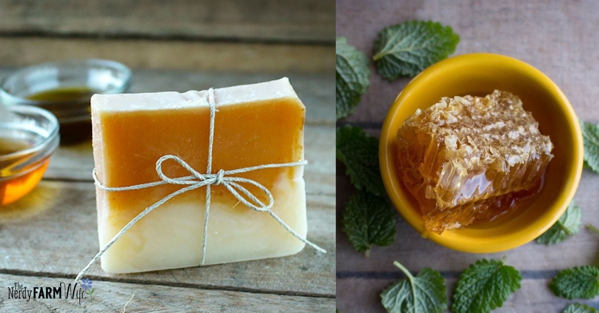 bar of soap made with honey in top layer, bowl of freshly cut honeycomb