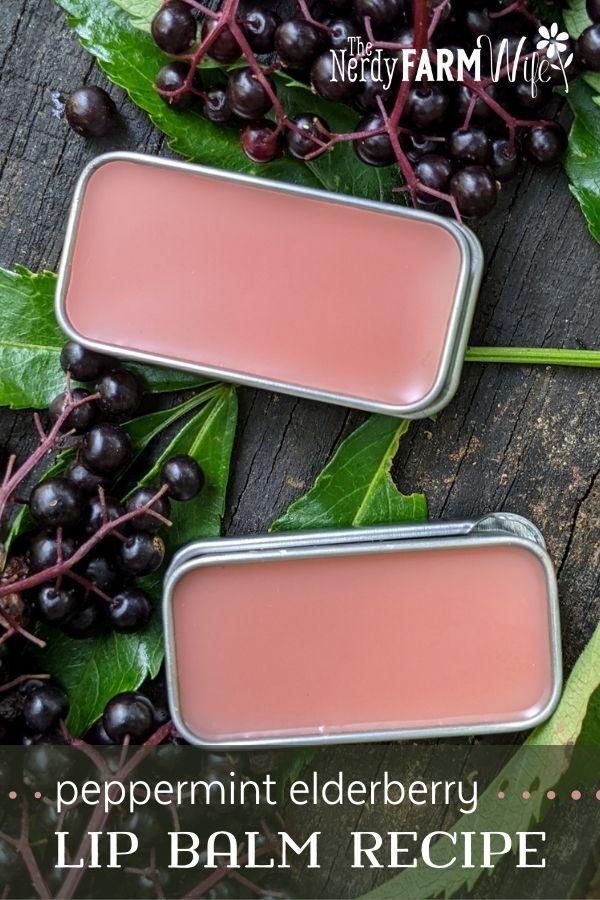 rectangular tins of lip balm surrounded by fresh elderberries; text says Peppermint Elderberry Lip Balm Recipe