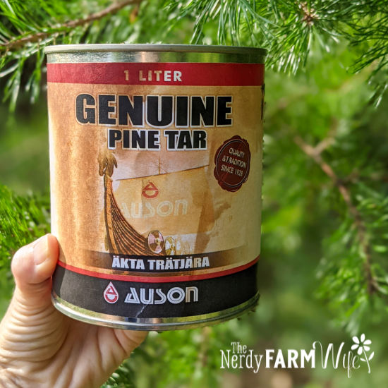 hand holding a container of Auson Pine Tar with pine tree in background