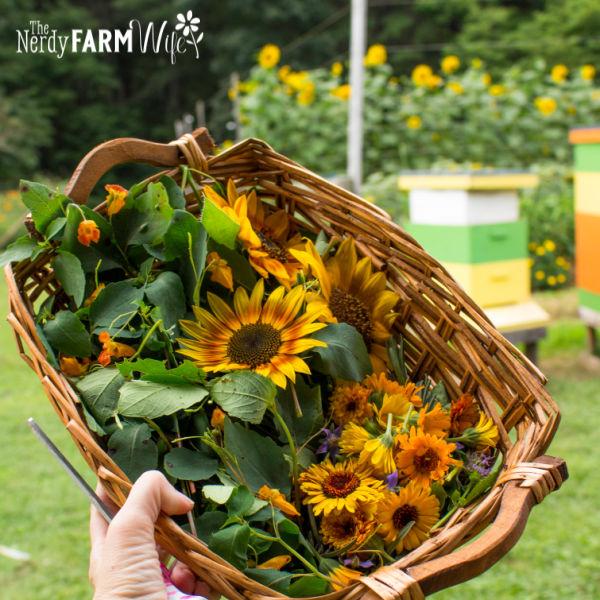 basket of sunflowers and calendula