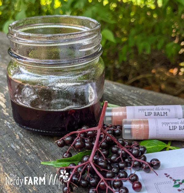jar of dark red oil beside fresh elderberries and tubes of lip balm