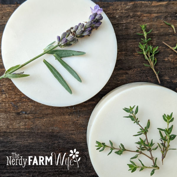 round bars of soap with fresh thyme and lavender sprigs on top