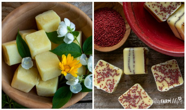 square scrub cubes with fresh calendula flowers and bowl of cranberry seeds