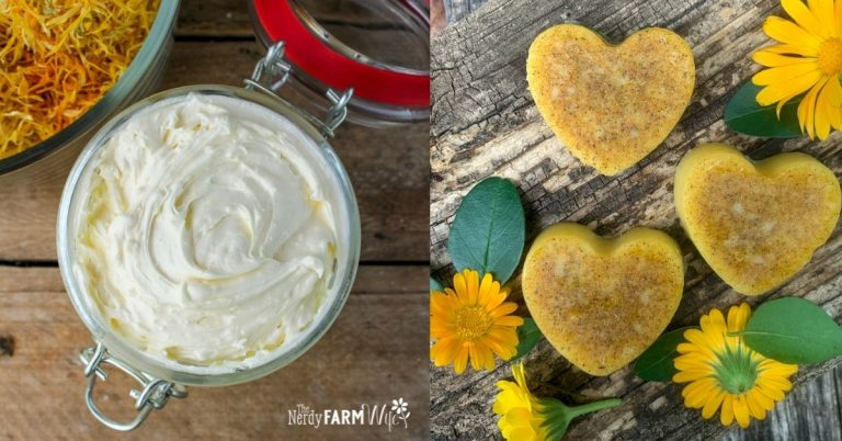 Calendula Bath Melts + Body Butter Recipes