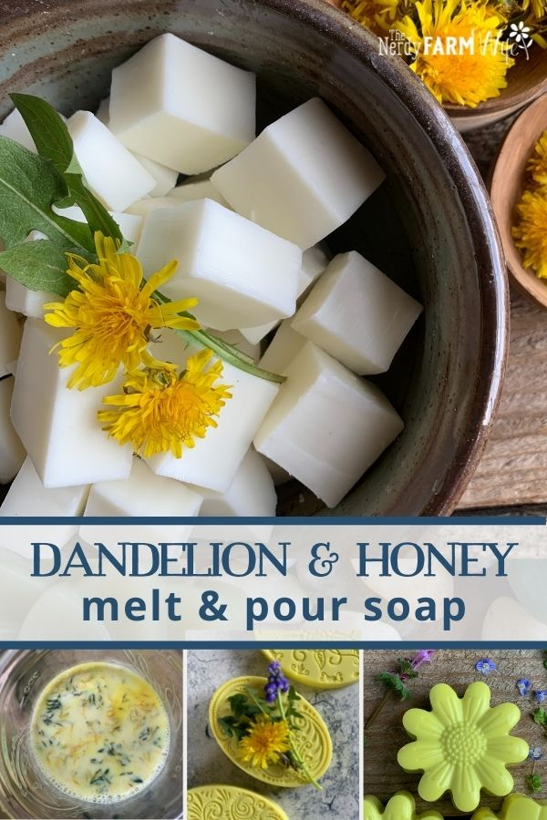 bowl of melt and pour soap base with fresh dandelions